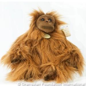 Orangutan_2a