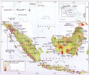 orangutan distribution