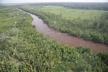Sekonyer River in Tanjung Puting National Park