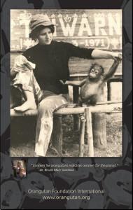 1971-Poster-pad