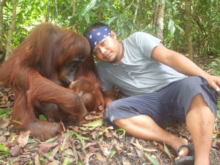 Mr Heppy and orangutan mother Tut at Camp Leakey