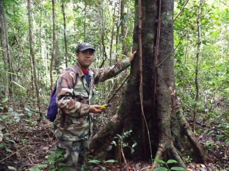 Pak Tamel surveying borders