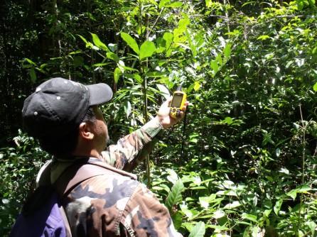 5002 – Pak Tamel checking his GPS