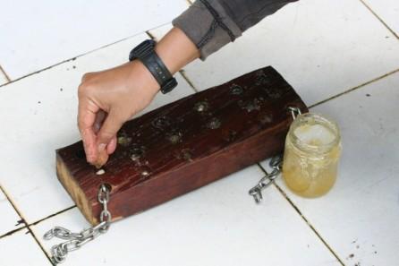 "Ibu Maryanti filling a ""termite"" feeder board with pineapple jam and peanuts"