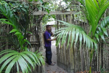 A secret garden: The idyllic chicken coop, made from cassava wood, and surrounded by palms.