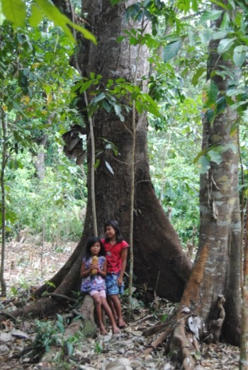 A mammoth durian tree.  Two girls are holding a fallen durian fruit as they wait for more to drop.