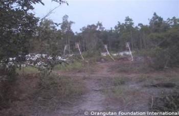 Zircon mining equipment adjoining the Rawa Kuno Legacy Forest