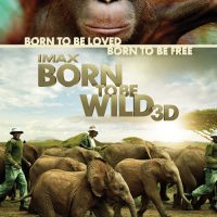 IMAX Born to be Wild 3D DVD
