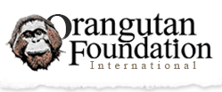 Orangutan Foundation International Logo