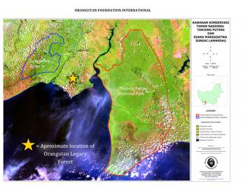 Map of orangutan legacy forest