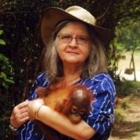 Dr Birute Mary Galdikas Orangutan Foundation Internatinoal