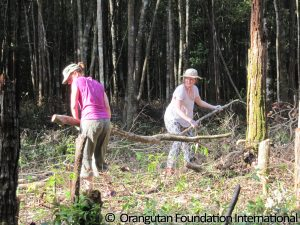 Wenka and Leva moving wood and brush from what will become the center of the island