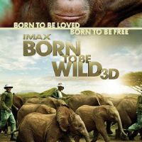 """Born to be Wild"" poster"
