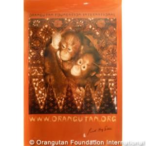 orangutan babies poster