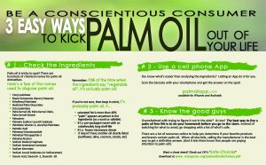 3 Easy Ways to Kick Palm Oil Our of Your Life - smallv2