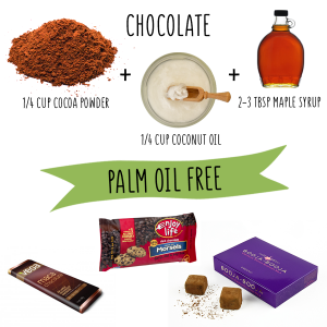 palm oil free chocolate recipe do it yourself zero waste vegan orangutan foundation international