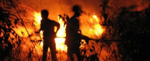 2015-09_fire-photo_08_forbanner