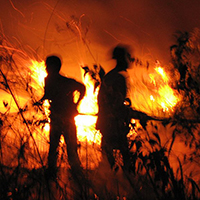 Fire Fighting and Prevention donate Orangutan Foundation International