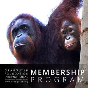 Membership Program - icon
