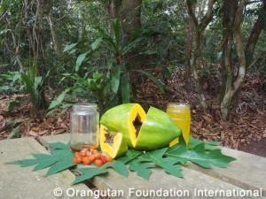 fruit ice papaya bliss ingredients