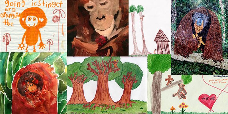 OFI Orangutan Art - Collage
