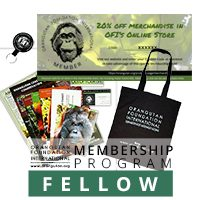 Fellow Membership