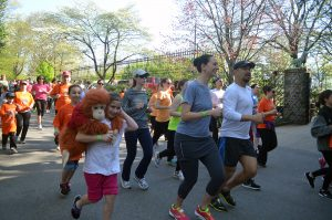 Orangutan Foundation International Save the Orangutans 5K Run/Walk