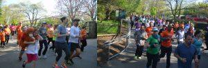 Orangutan Foundation International Save the Orangutans 5K Run/Walk