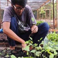 2016-03-04_Herbarium nursery_Pak Harits_MHP_thumb