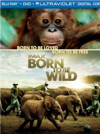blueray-dvd-born-to-be-wild
