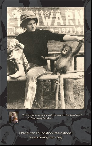 "Dr. Biruté Mary Galdikas 1971 Poster ""Concern for orangutans indicates concern for the planet"""