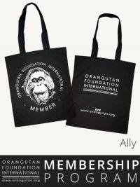 Orangutan Foundation International Ally Member Membership Program