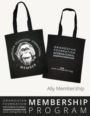Orangutan Foundation International Ally Membership