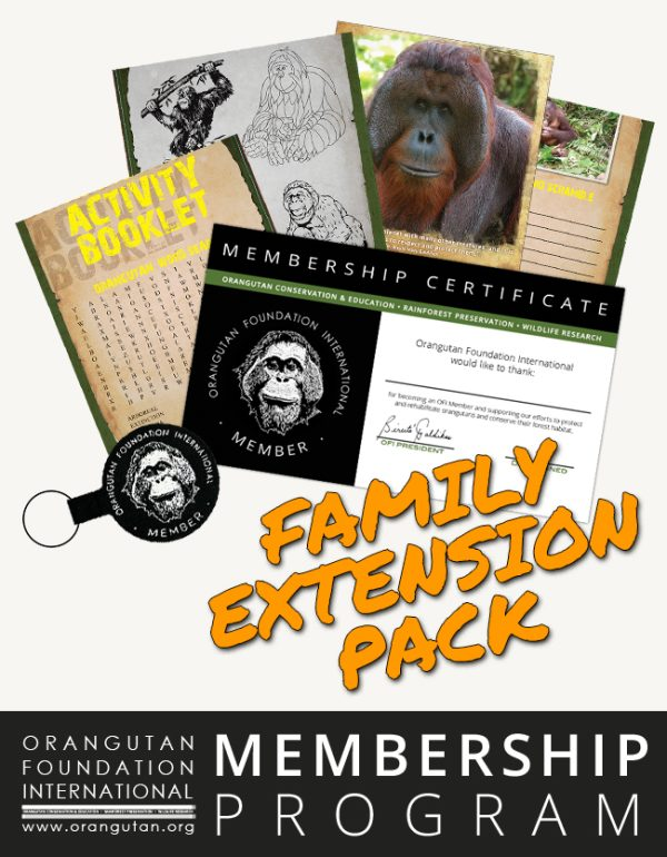 Orangutan Foundation International Member Program Family Extension Pack Membership save orangutans