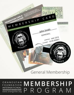 Orangutan Foundation International Membership Program