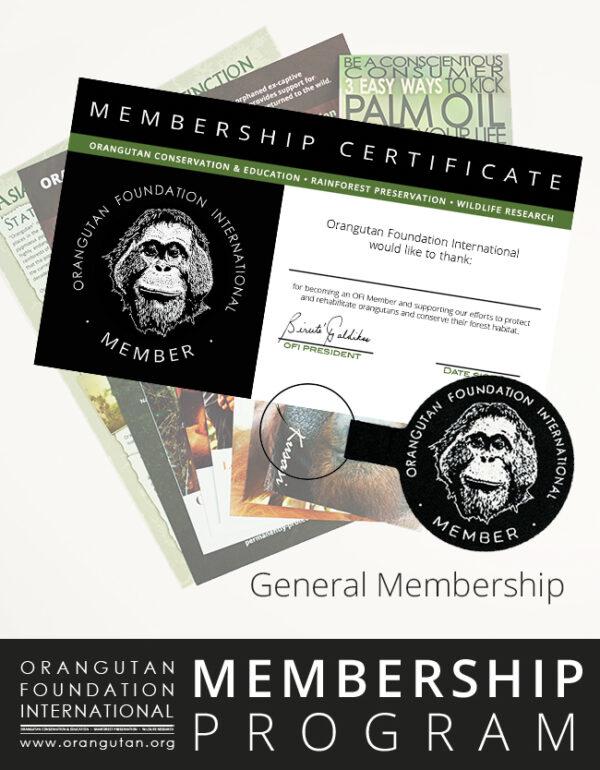 Orangutan Foundation International Member Program General Membership save orangutans