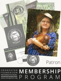 Orangutan Foundation International Patron Member Membership Program