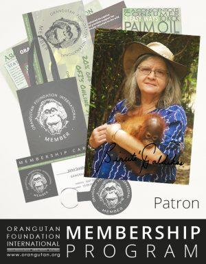 Orangutan Foundation International Patron Member Membership Program