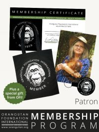 Orangutan Foundation International Membership Program patron save orangutans