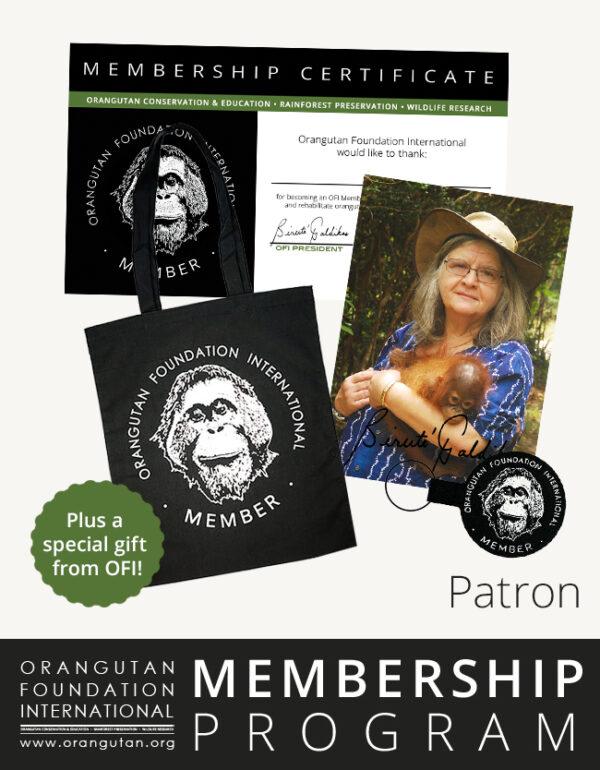 Orangutan Foundation International Membership Program patron save orangutans