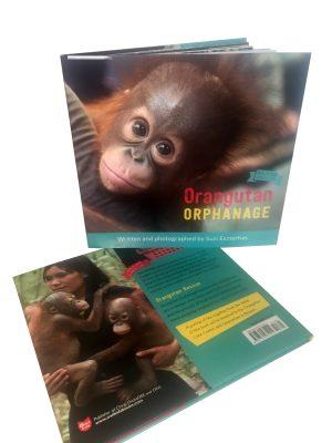 Orangtuan Orphanage Suzi Eszterhas Orangutan Foundation International Children's Book