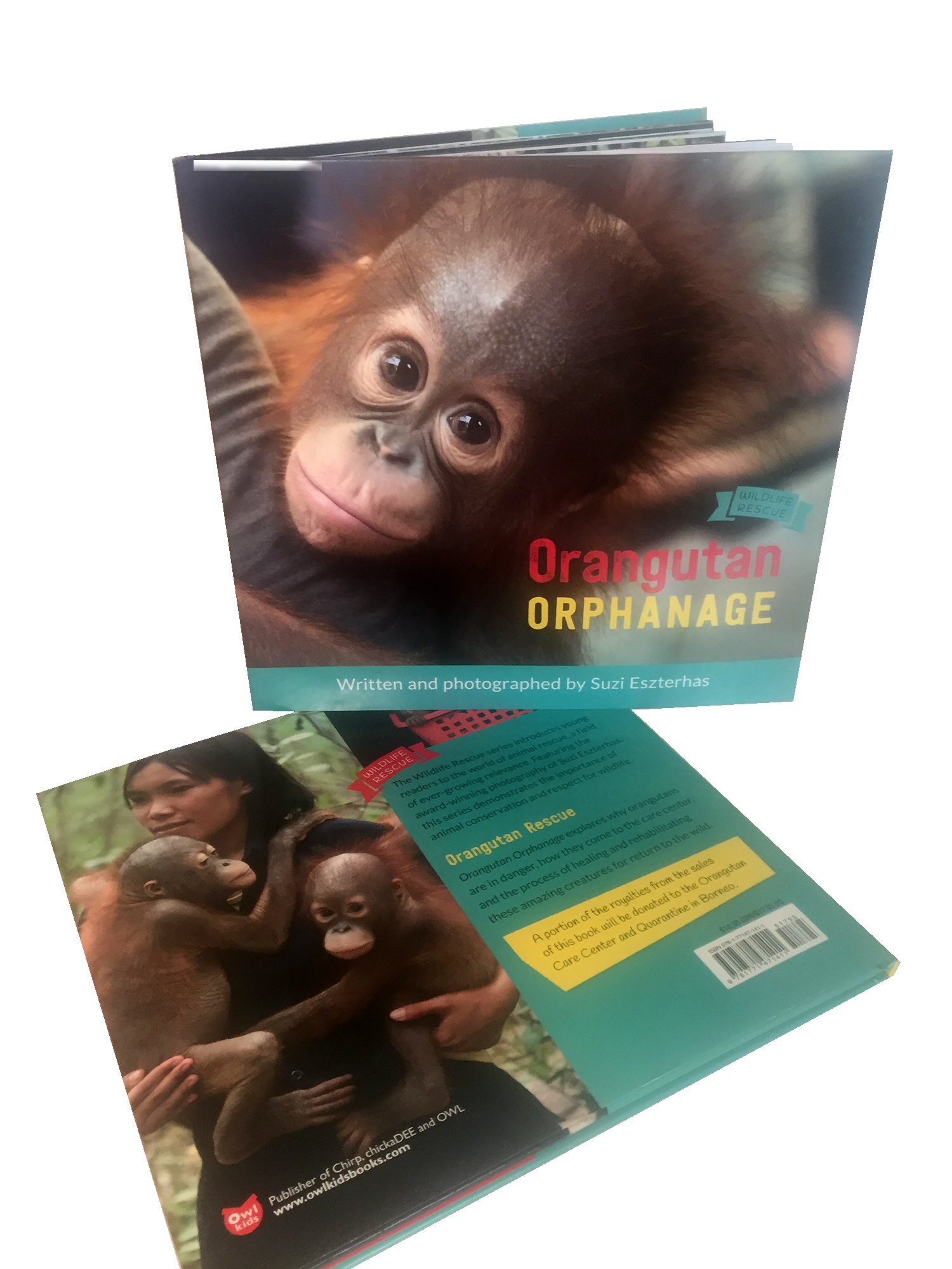 Orangtuan Orphanage Suzi Eszterhas Orangutan Foundation International Children's Book
