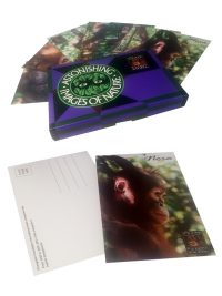 Postcard Set Orangutan Foundation International Astonishing Images of Nature
