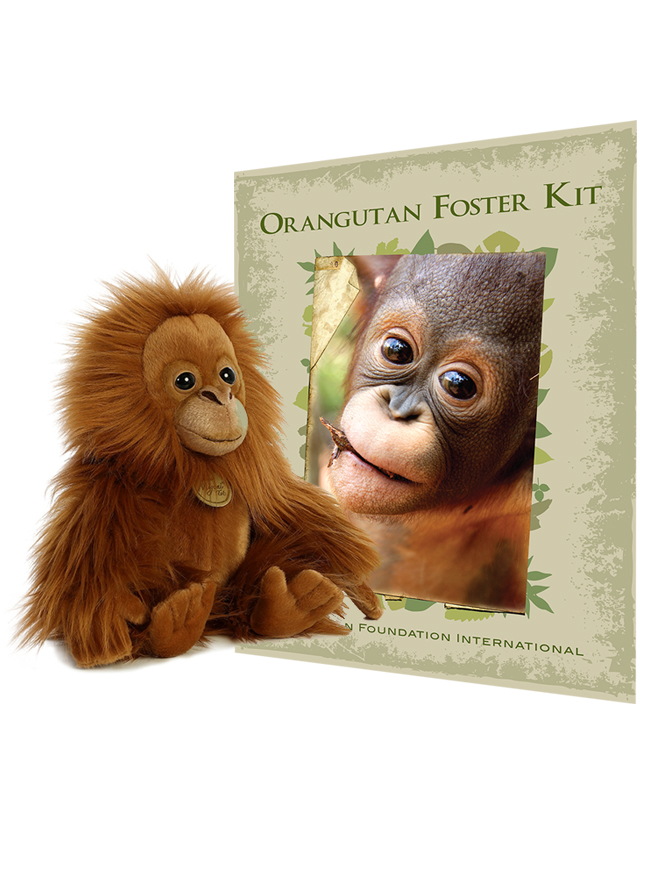 Foster kit and miyoni plush orangutan bundle orangutan foundation international