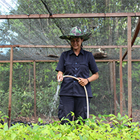 Ibu Cici Employee Spotlight Orangutan Foundation International