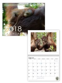 2018 Orangutan Foundation International Calendar