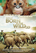 Born to Be Wild 3D Movie cover