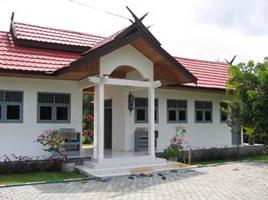 Orangutan Care Center 1998